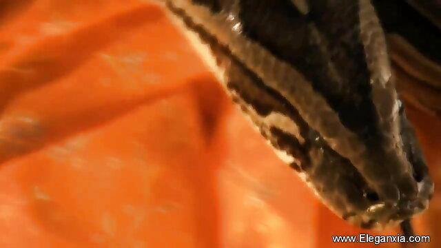 গুদে হাত বাংলা video xxx com ঢোকানর প্রতিমা যোনি গুদ চরম